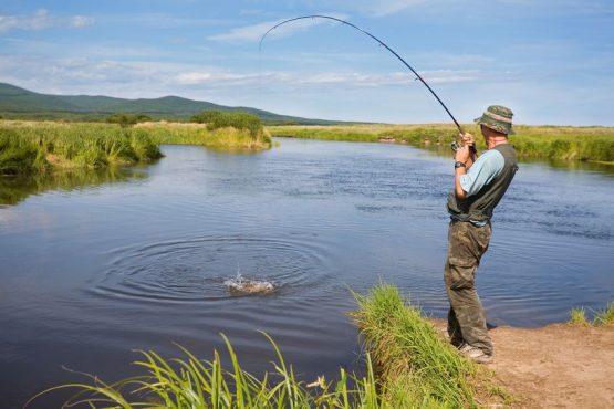 Рыбалка в частном пруду